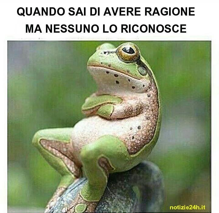 immagini_divertenti_whatsapp