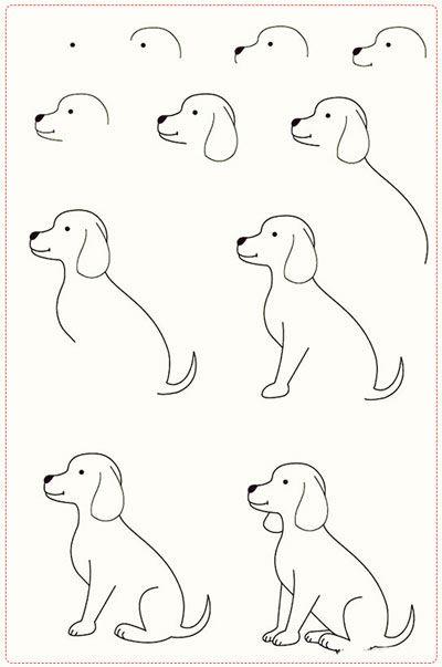 come disegnare un cane