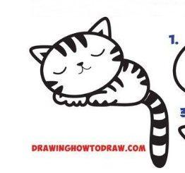 come disegnare un gatto che dorme