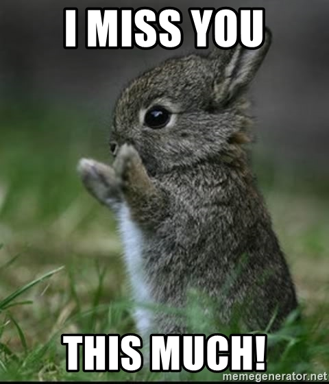 gif I miss you